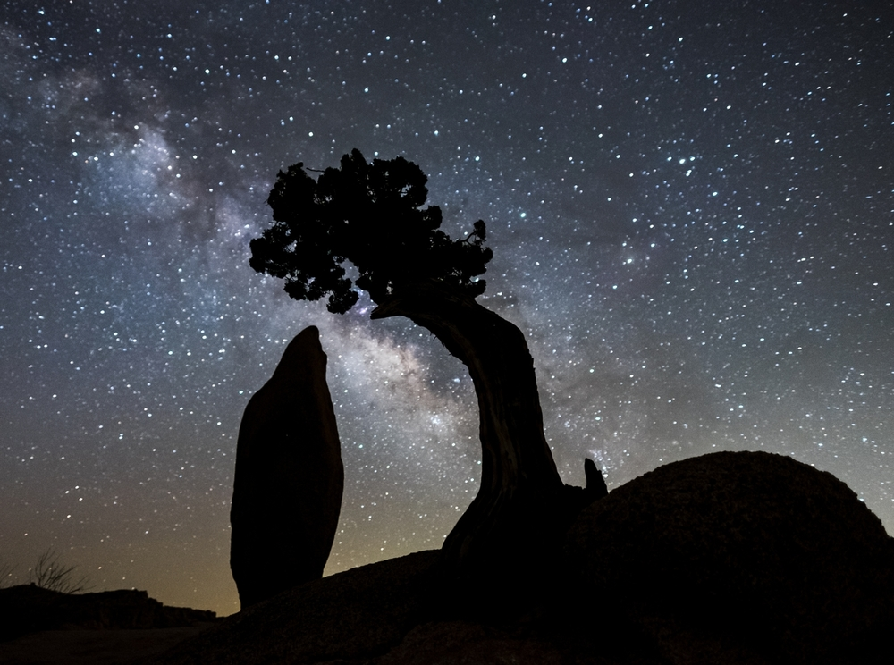 The Milky Way galaxy in Joshua Tree National Park in California.