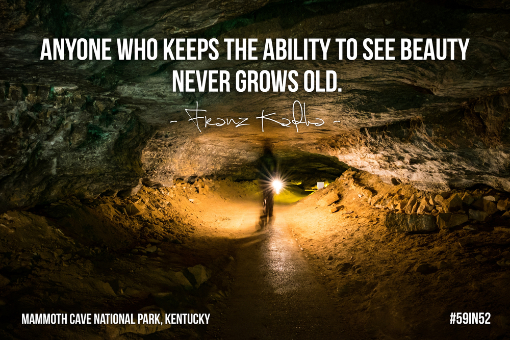 """Anyone who keeps the ability to see beauty never grows old."" - Franz Kafka"