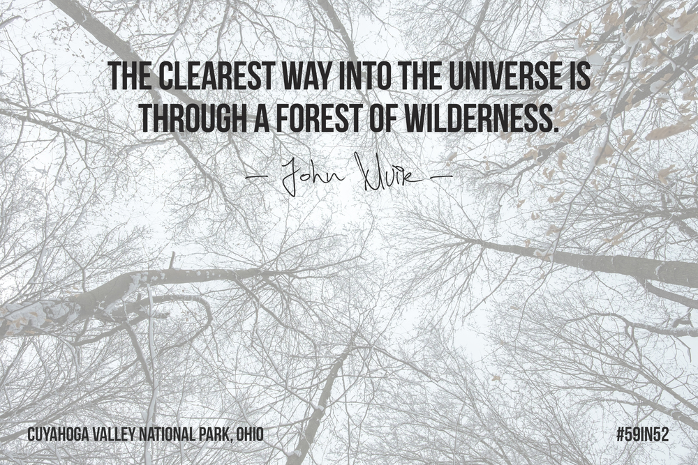 """The clearest way into the universe is through a forest of wilderness."" - John Muir"