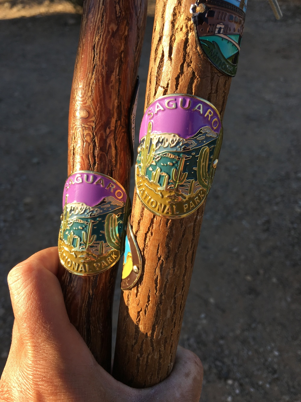 Hiking stick medallions from Saguaro National Park in Arizona