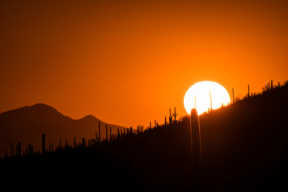 Our favorite image in Saguaro....beautiful setting sun with the mountains and the cactus. We loved Saguaro National Park! onward but we'll go back...