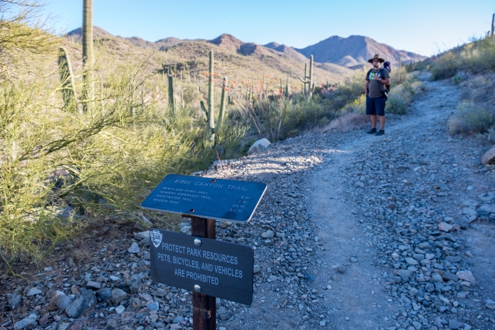 Keep trails beautiful, in Saguaro National Park.