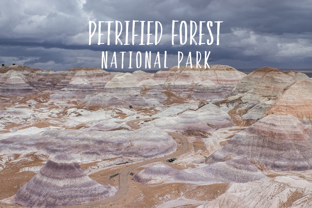 Park 17/59: Petrified Forest National Park in Arizona.