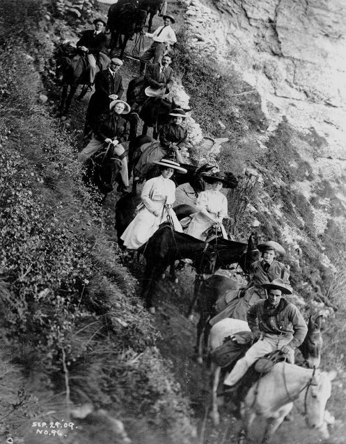 The bread and butter of the Kolb brothers' photography business relied on images such as this one of tourists on mules descending the Bright Angel Trail. The Kolb brothers took thousands of such images over the years out of a window of their home and studio that overlooked the trail entrance. Photo: Kolb Brothers / Grand Canyon National Park.
