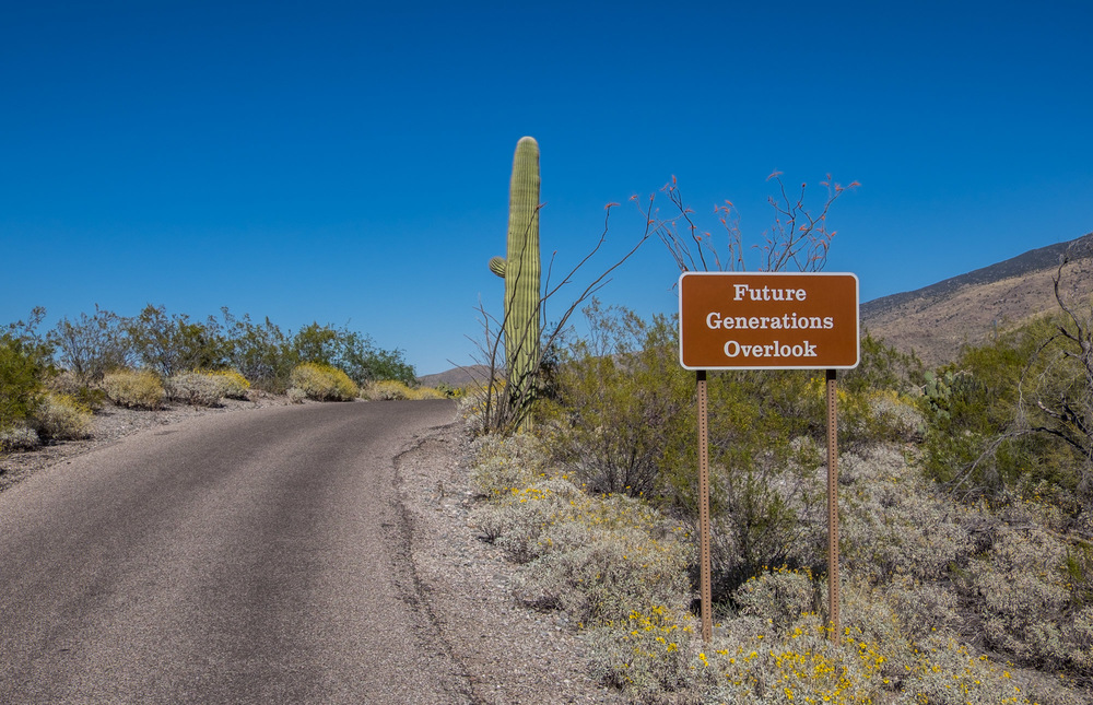 "Love this! ""Future Generations Overlook"" at Saguaro National Park in Arizona."