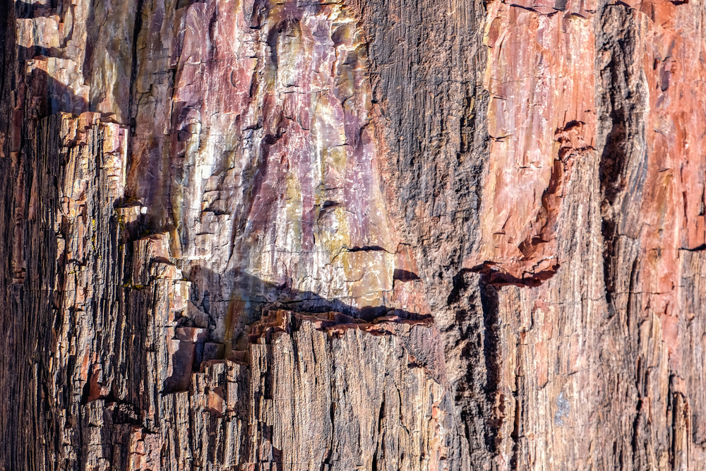 The exterior of 225 million year old petrified wood at Petrified Forest National Park in northern Arizona.