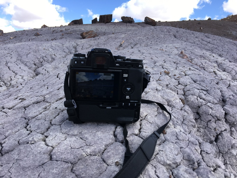Fujifilm X-T1 on the landscape at Petrified Forest National Park in Arizona.