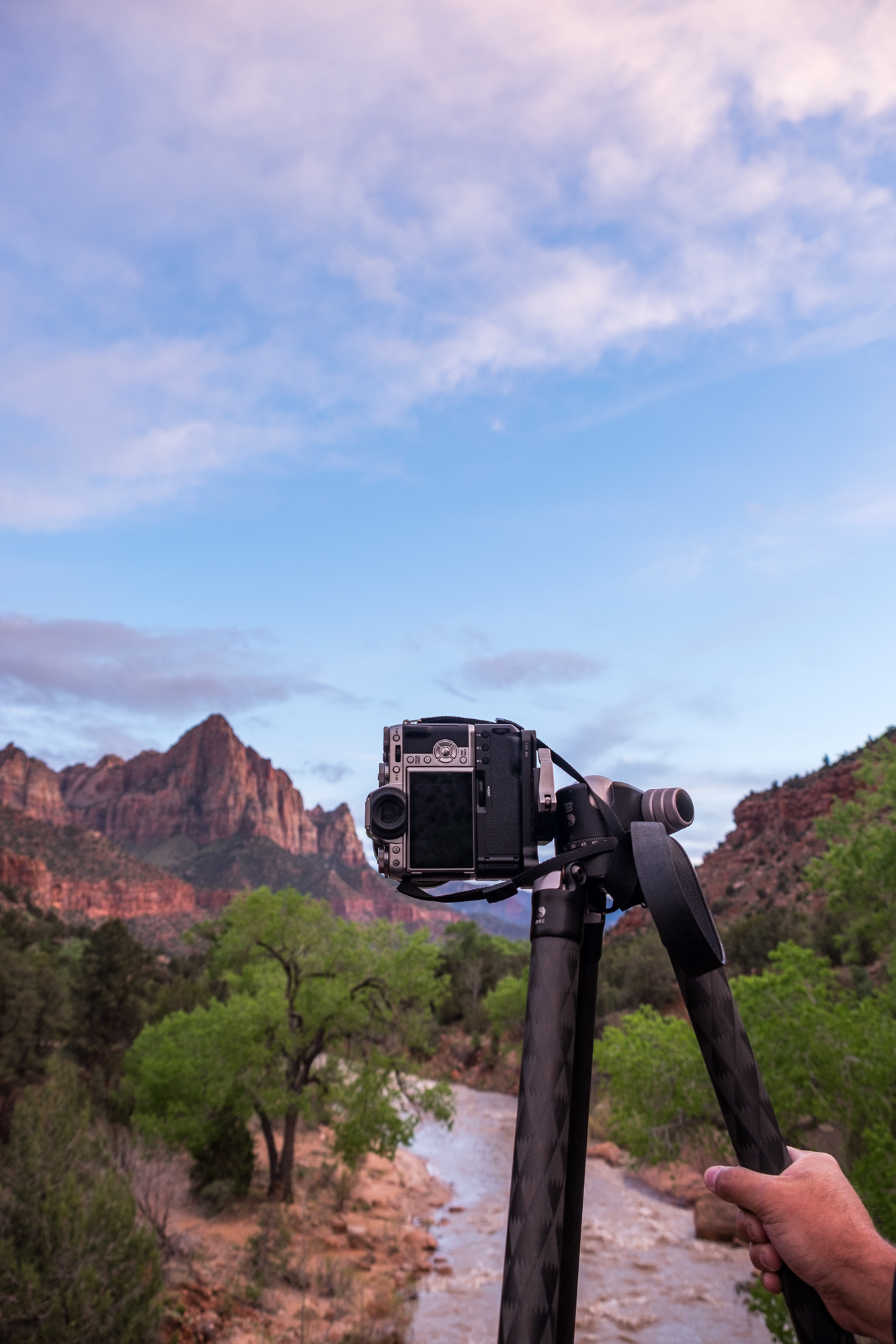 20160410-SP-Zion National Park-_DSF1181.jpg