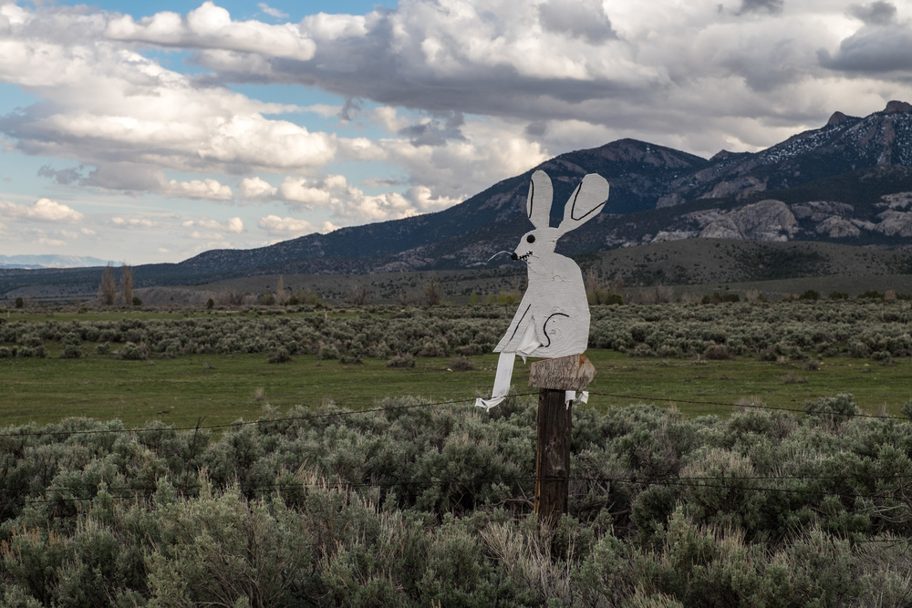 I tell ya, the people of Baker (and Nevada, in general) have a great sense of humor. The owner of some property right next to the park takes it upon himself to decorate the road with interesting art objects such as this demonic bunny sitting on the fence. I think this was an ode to the plethora of bunnies in the area and their tendency to run out into the road, but not sure...