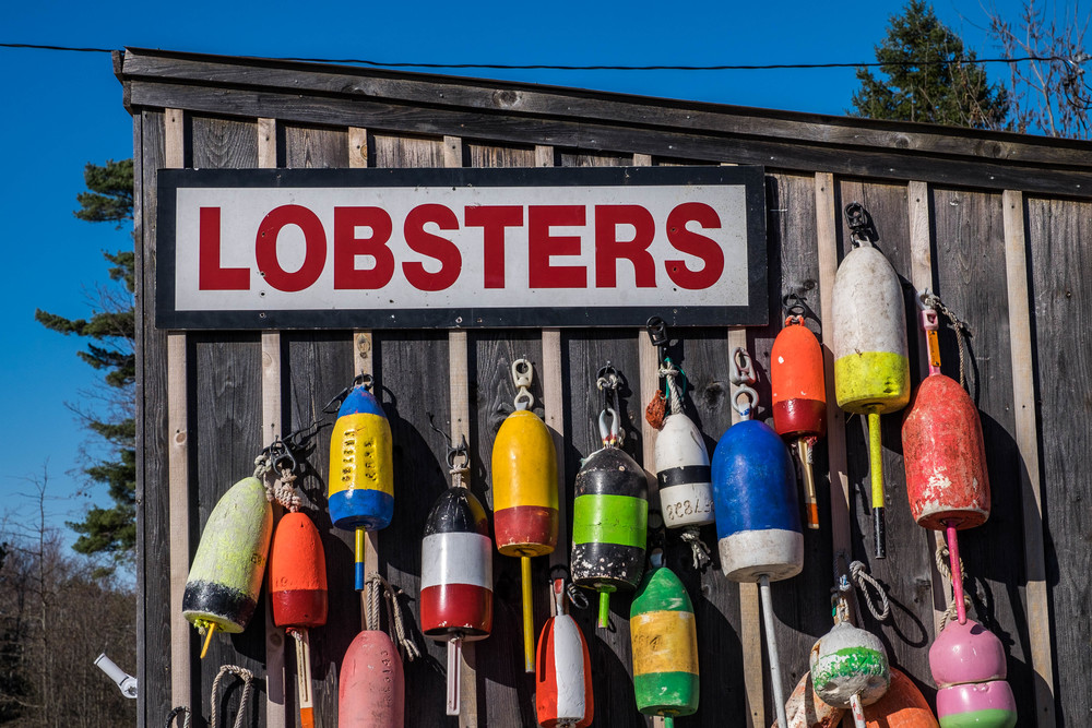 Lobster culture colors the surrounding areas of the national park everywhere you look.