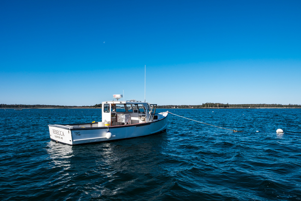 Acadia National Park - 044.jpg