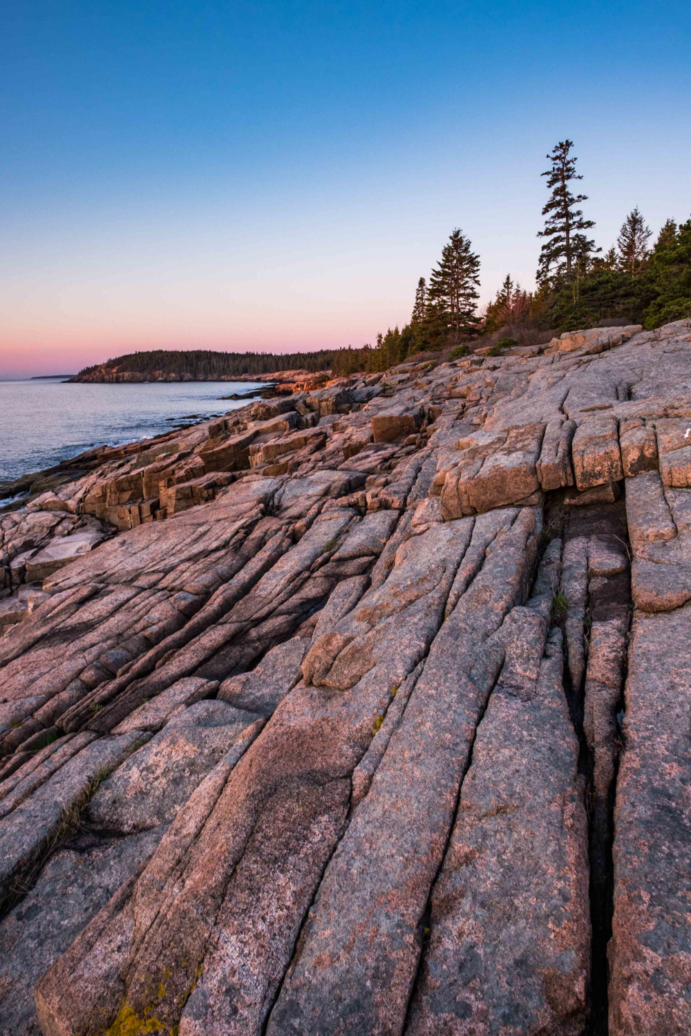 The Coastal Trail (from Sand Beach to Otter Point) at sunset.