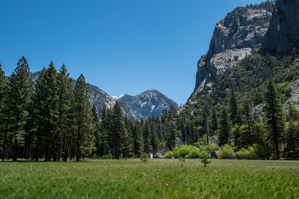 Kings Canyon National Park - 012.jpg