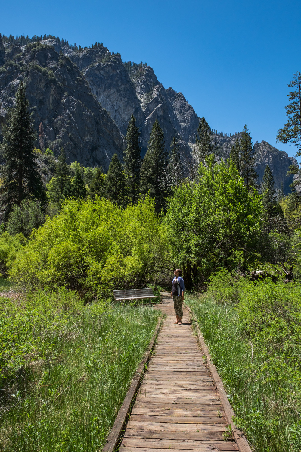 Kings Canyon National Park - 014.jpg