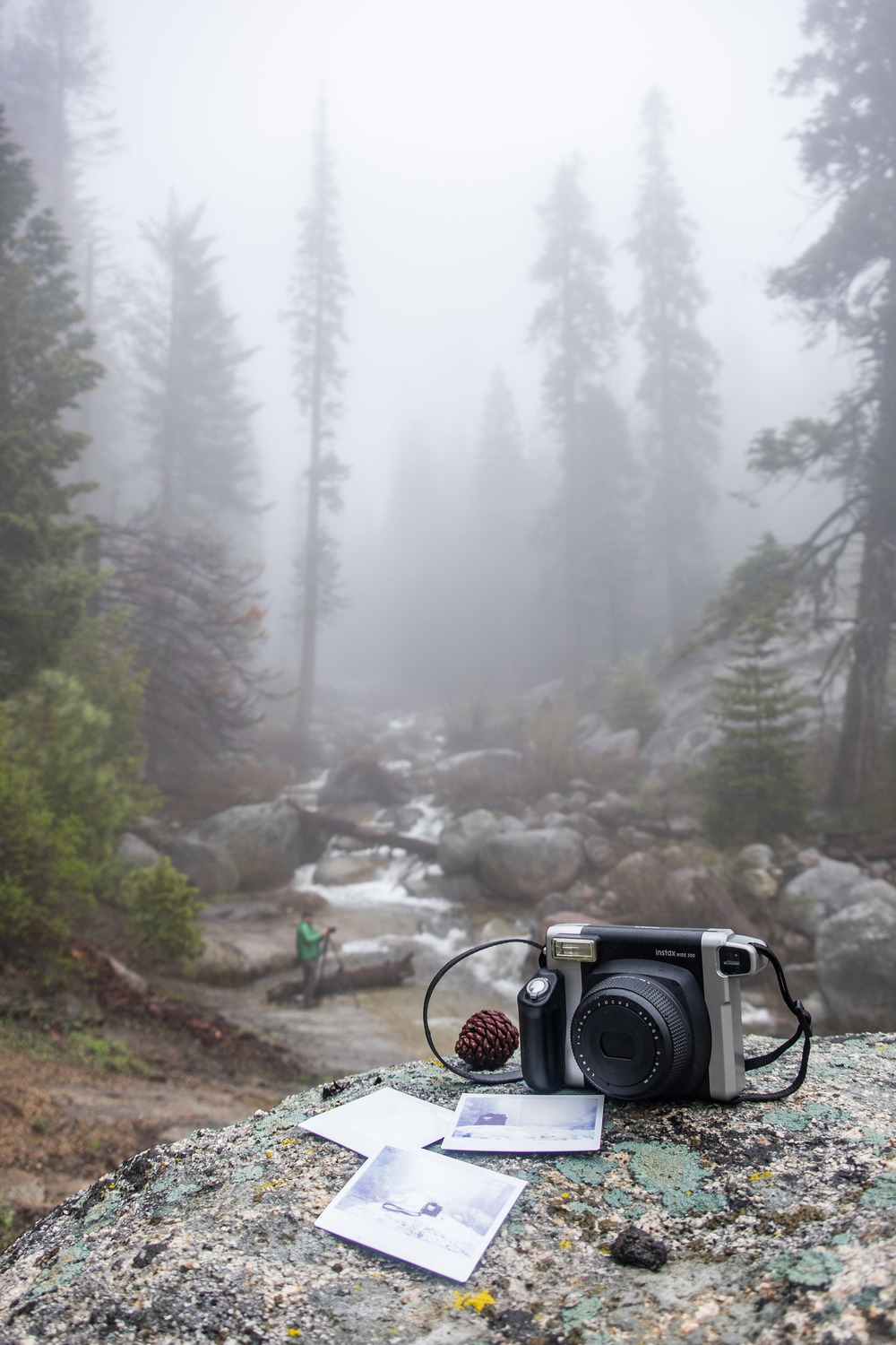 Instax captures a moody scene in Sequoia National Park in California.