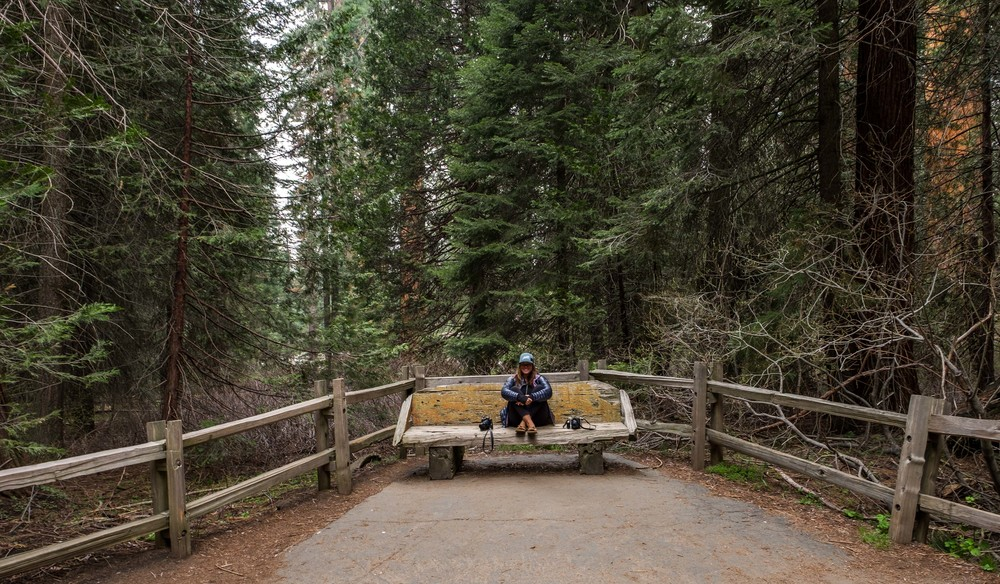 Stef chillin' in Kings Canyon National Park.