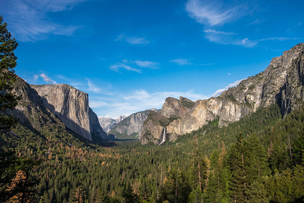 Perfection at Tunnel View.
