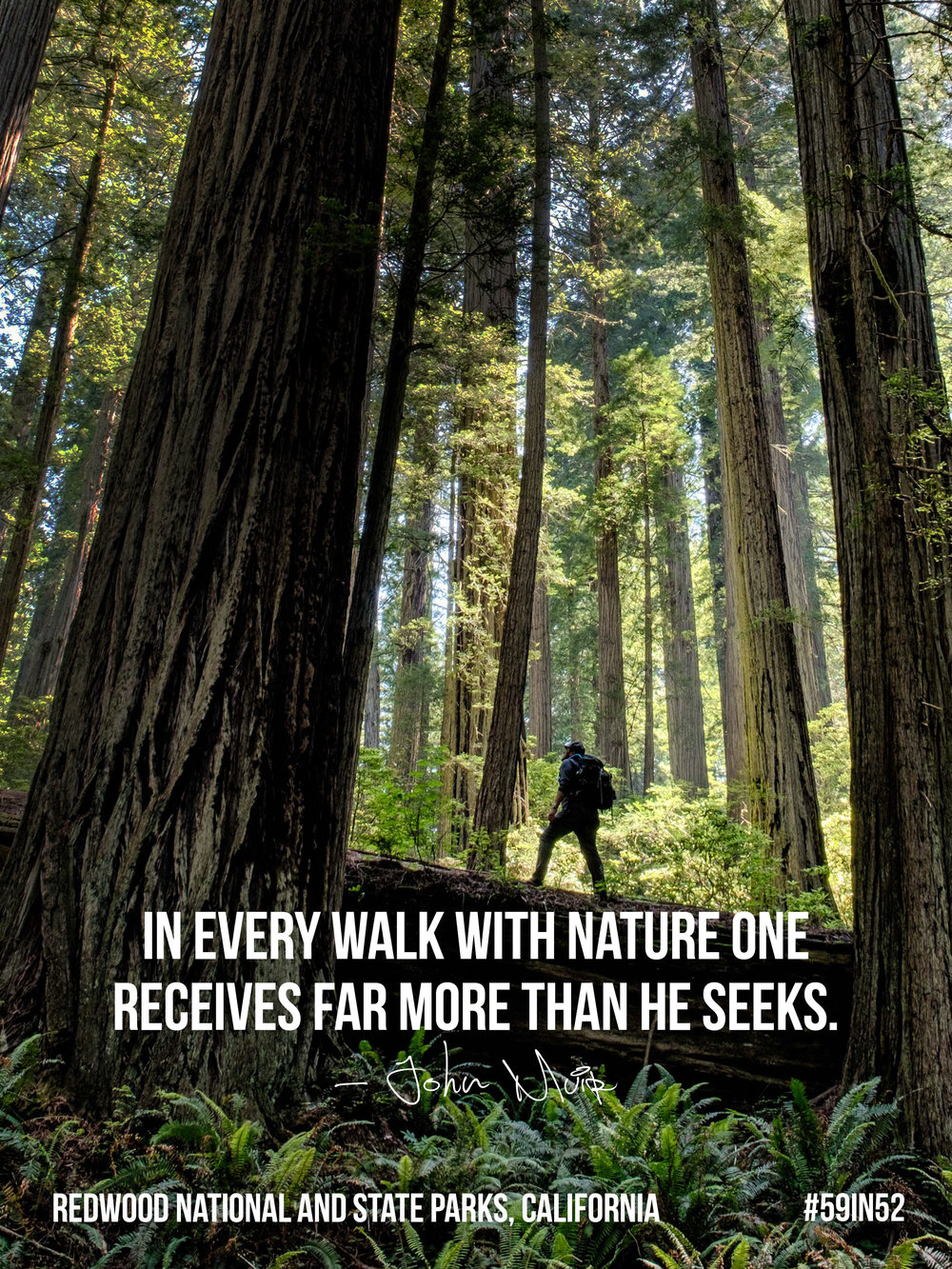 'In every walk with nature one receives far more than he seeks.' – John Muir