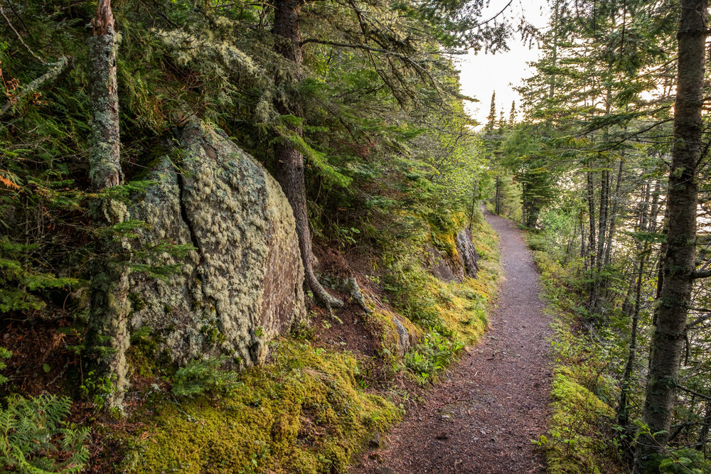 There are great hiking trails all around the lodge.