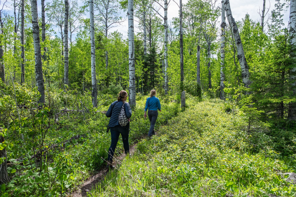 Marina Alexander leads Stefanie Payne into the wilds of Isle Royale, Marina's second home -- she knows of the places that just cannot be found by anyone but a local!