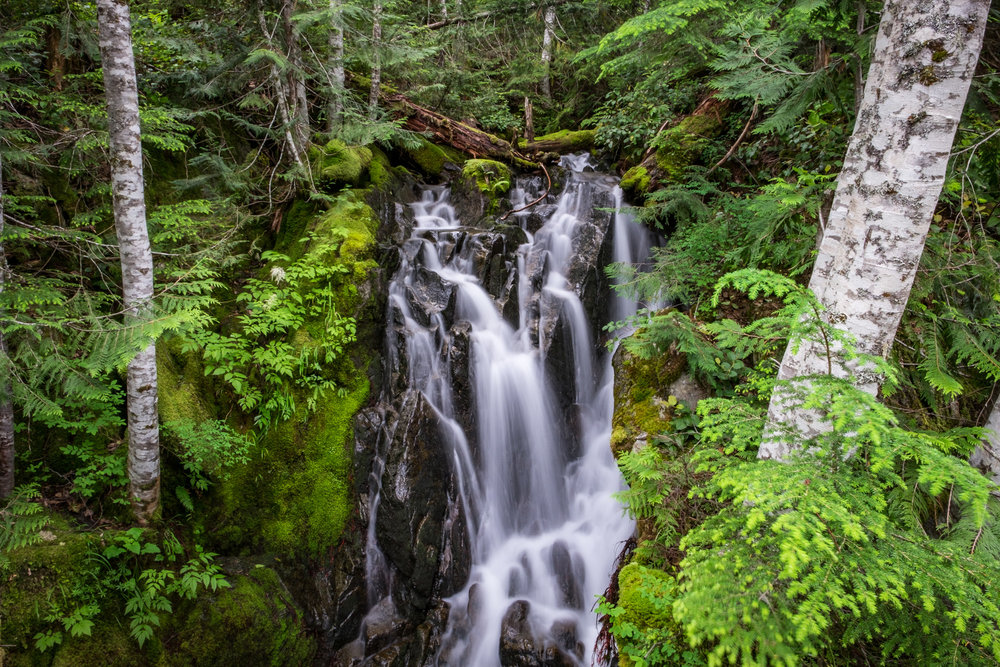 It is hard to go anywhere in the Cascades without seeing waterfalls.