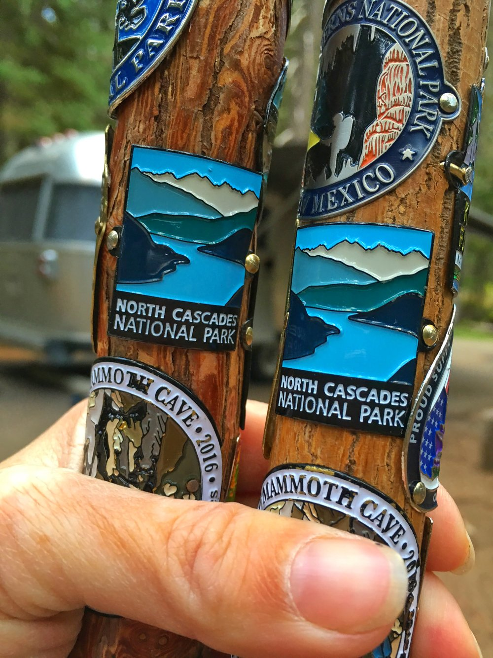 Hiking stick medallions from North Cascades National Park in Washington State.