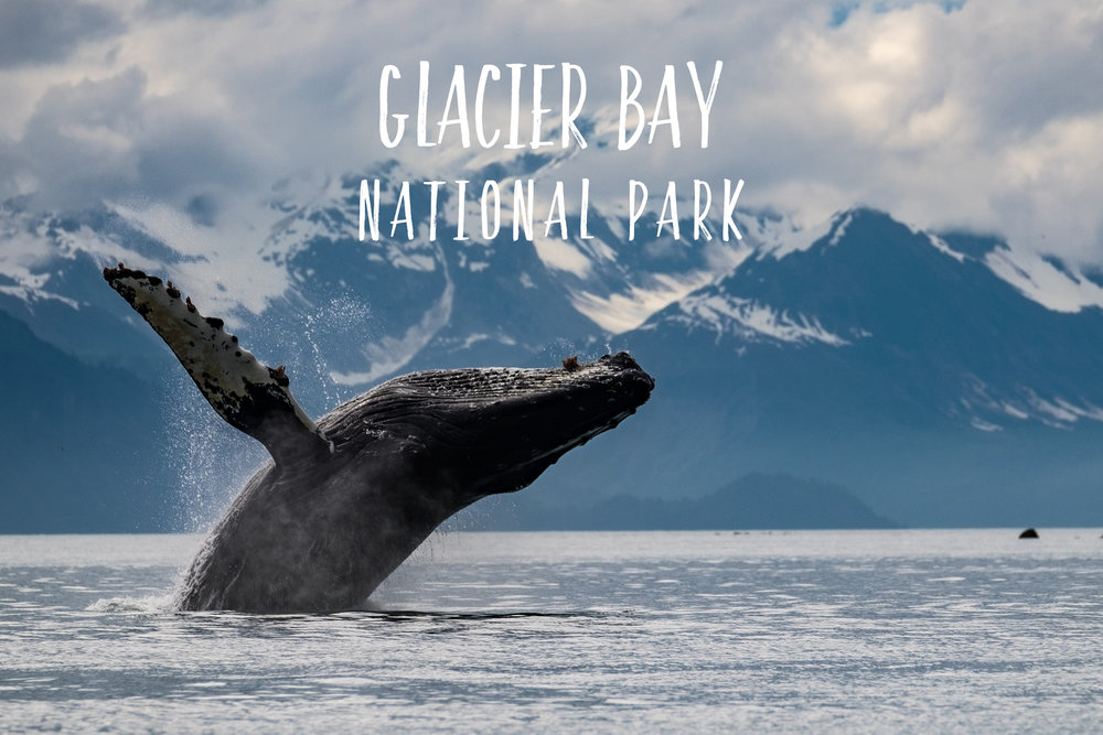 Park 30/59: Glacier Bay National Park in Alaska