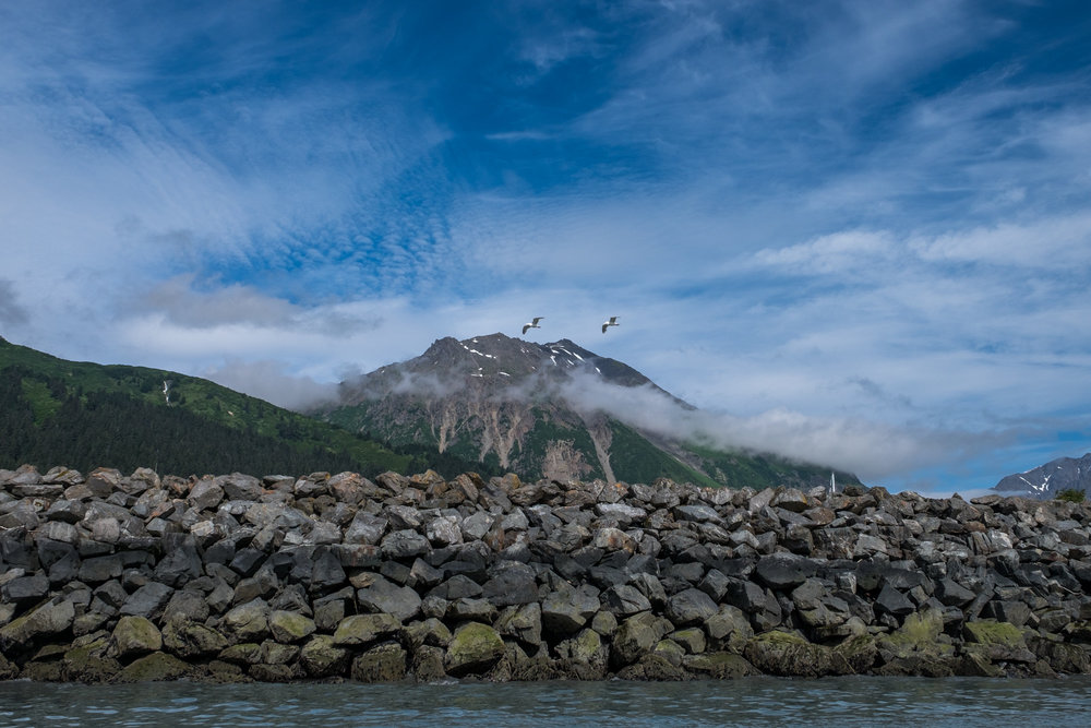 Our first adventure was an overnight kayaking trip to Bear Glacier. This was shot leaving the Seward harbor.