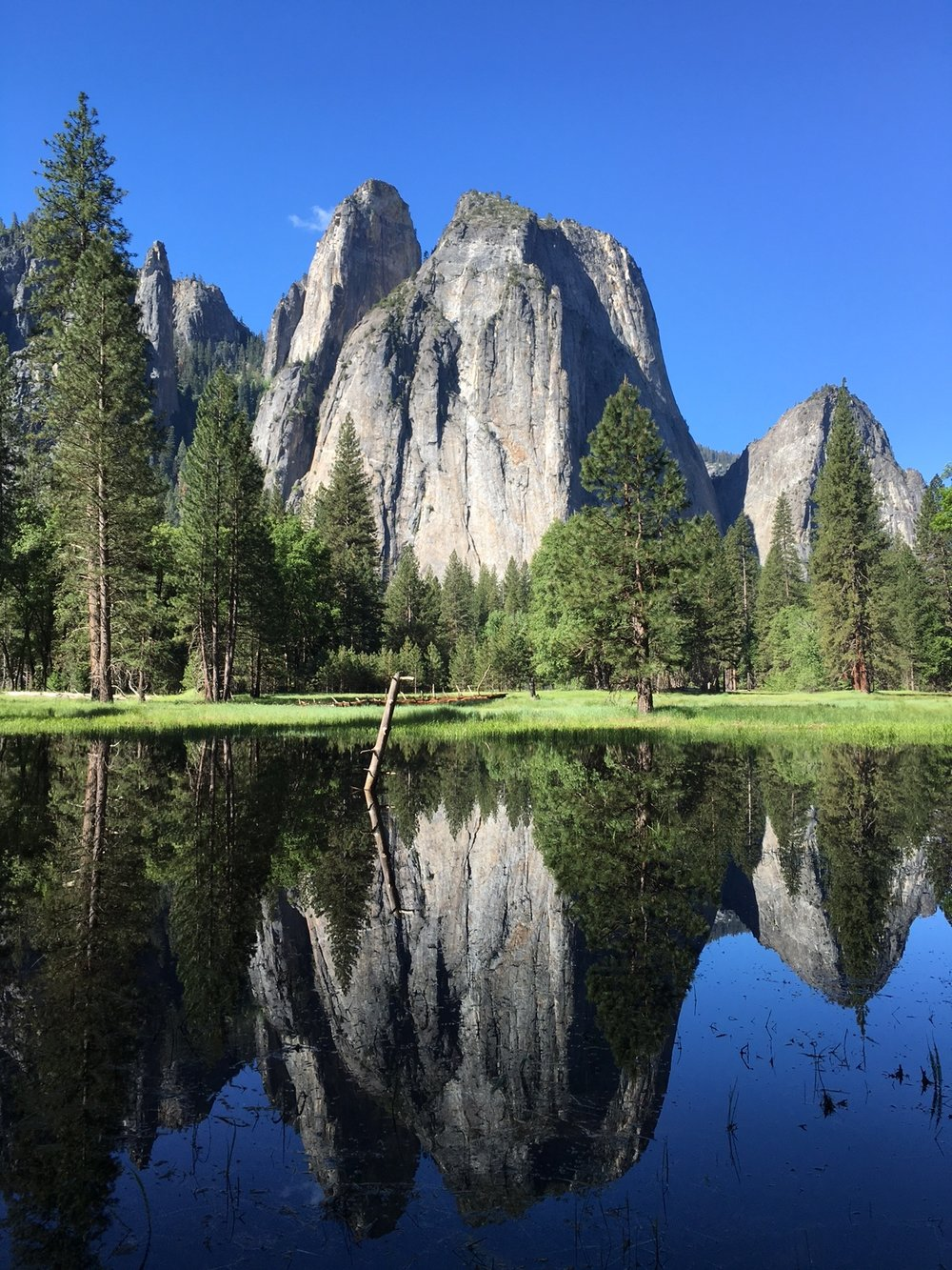 Granite formations reflect in waters of the Yosemite Valley floor in beautiful Yosemite National Park in California. Photo credit: Jonathan Irish