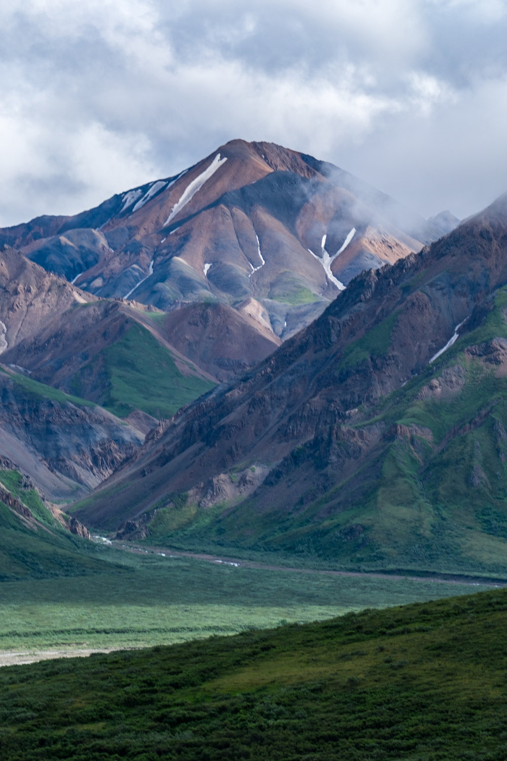 Denali National Park - 019.jpg