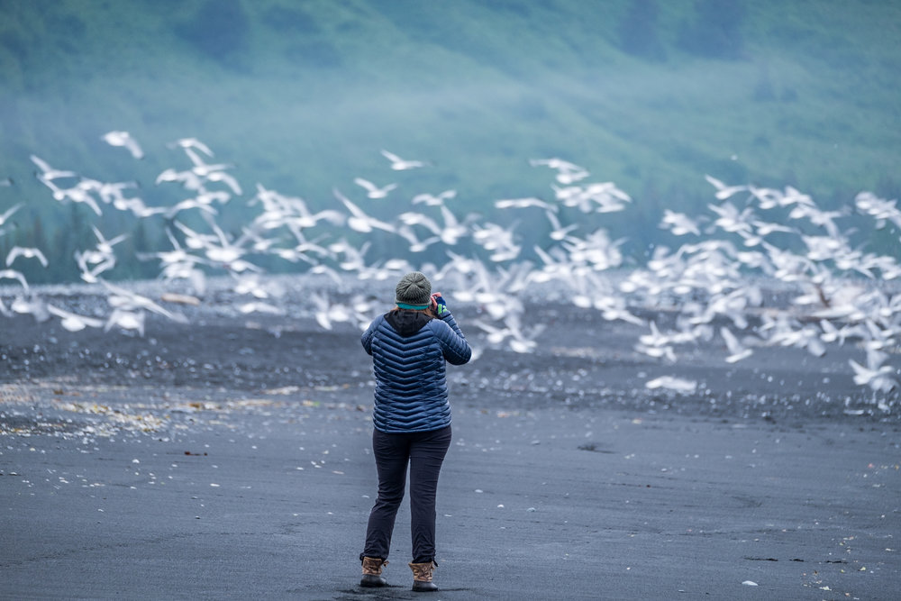 Stefanie Payne photographing bird swarms at Bear Glacier in Kenai Fjords National Park with the Fujifilm X-T1.