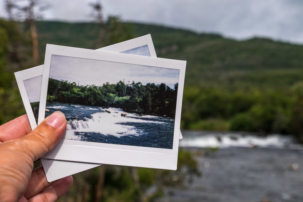 Maybe the only Fujifilm Instax Wide 300 shot of bear catching salmon at Brooks Falls! :)