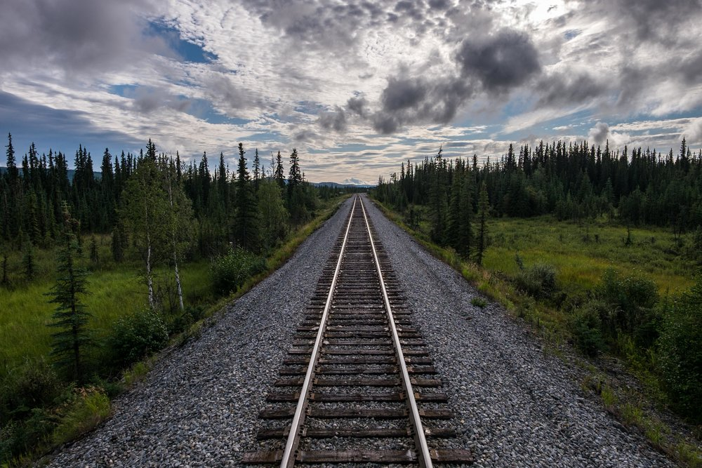 On the way to Fairbanks from Anchorage on the famed Alaska Railroad! Look at those spruce trees, and that greenery, and those clouds! It was a beautiful journey the entire way.