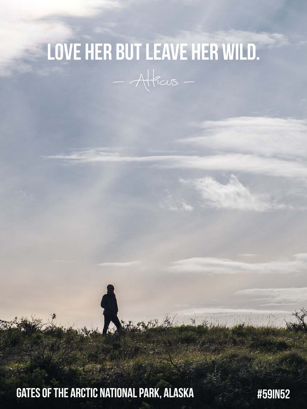 'Love her but leave her wild.' - Atticus