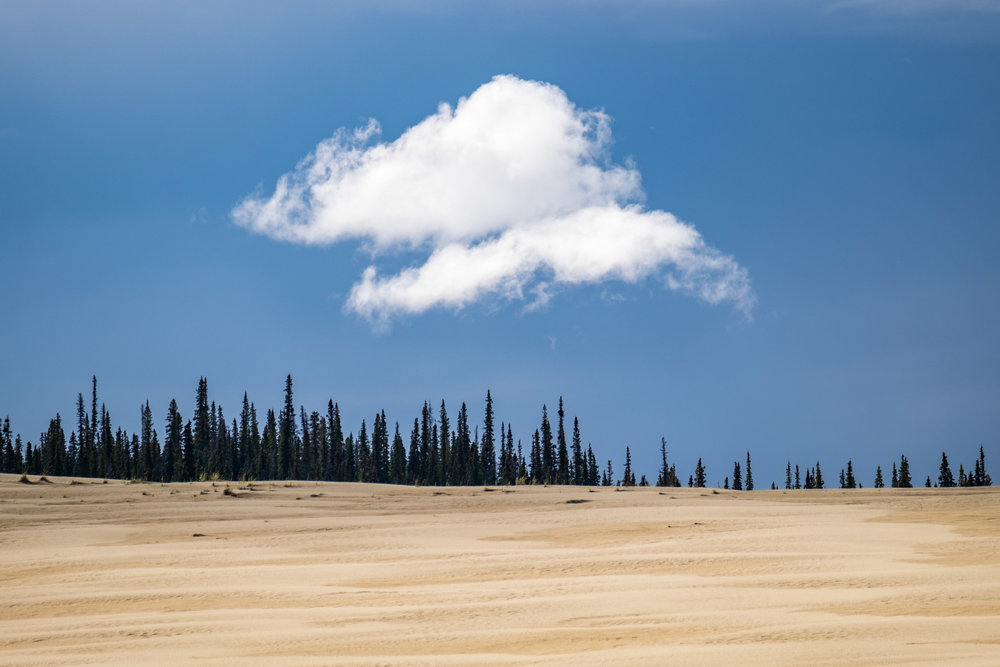 Kobuk Valley National Park - 058.jpg