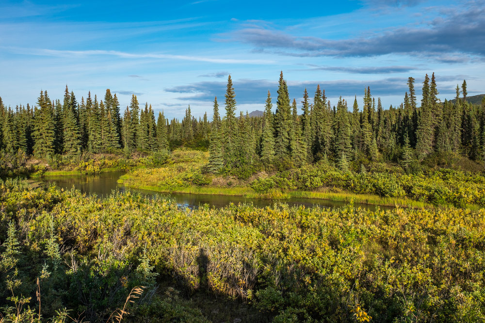 Kobuk is an ancient wilderness.