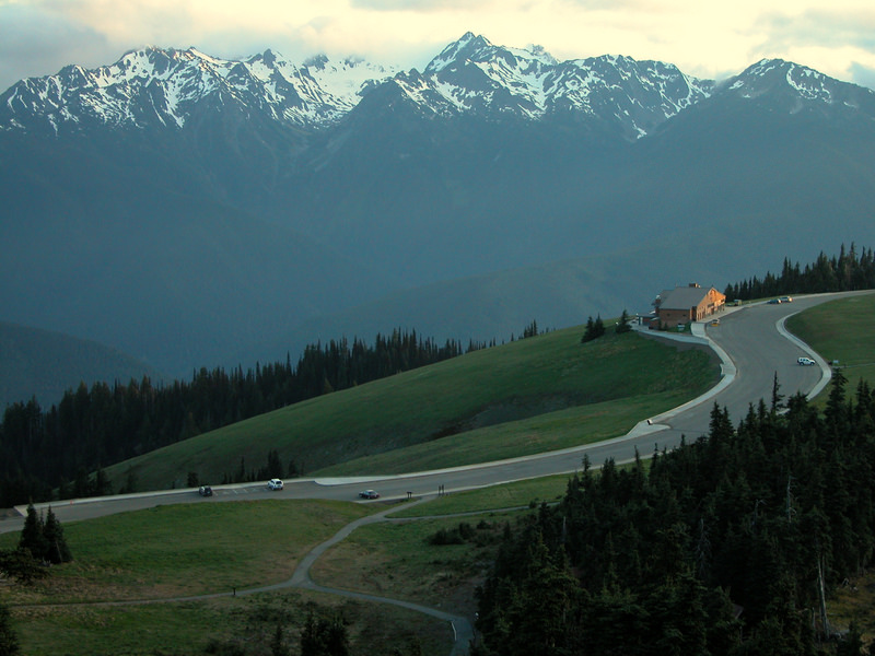 Weather eclipsed our photography at Hurricane Ridge this year so unfortunately, we have no photos of our own to illustrate the beautiful mountain-scape—so we share this instead, a wonderful shot of the Hurricane Ridge Visitor Center captured by the National Park Service.