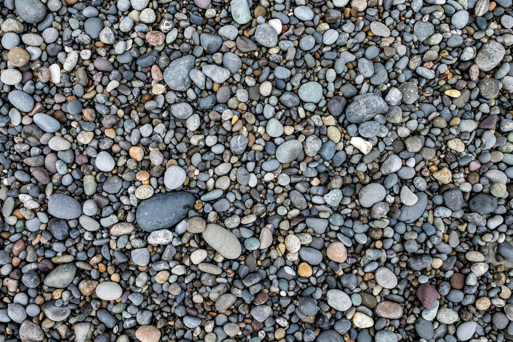 Textures of the beach.