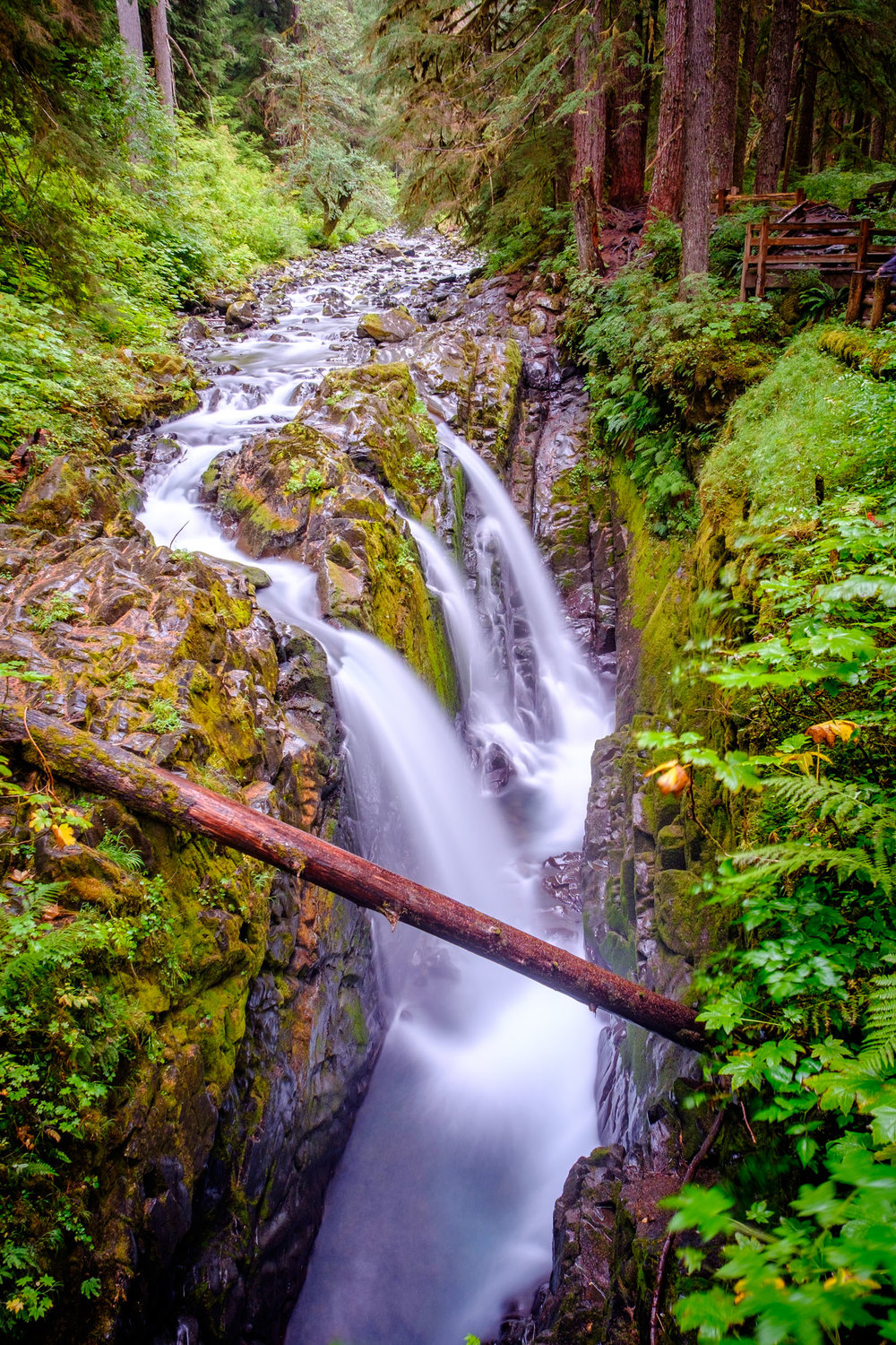 The beautiful Sol Duc Falls.