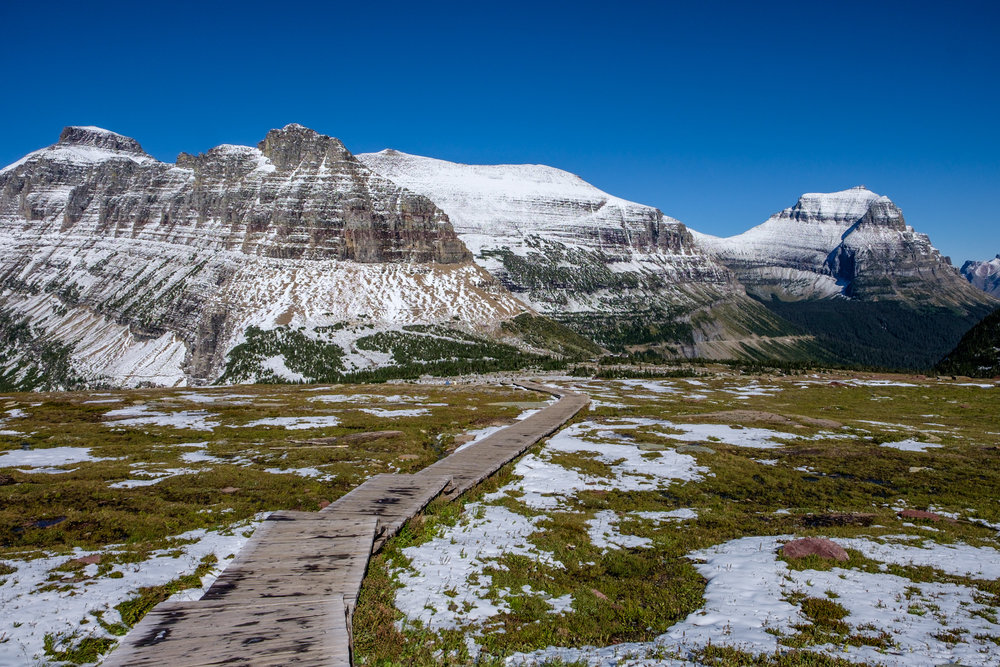 Hiking up to Hidden Lake Overlook from Logan Pass Visitor Center is a must-do activity in the park.