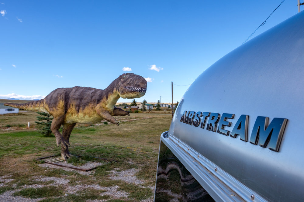On the way out of the park we had to dodge this T-Rex! Close call for our buddy, Wally, but he made it out intact.
