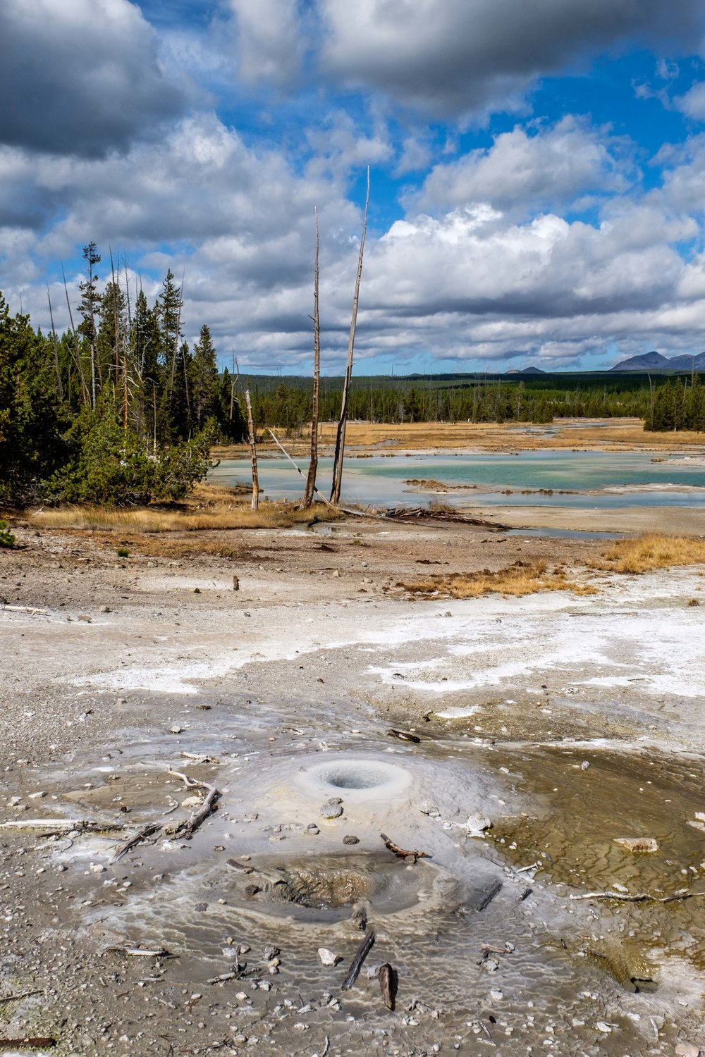 Boiling mudpots are right off the boardwalk through the Geyser Basin.