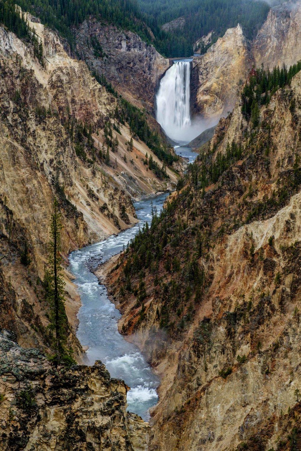 Looking down the Grand Canyon of the Yellowstone from Artist Point.
