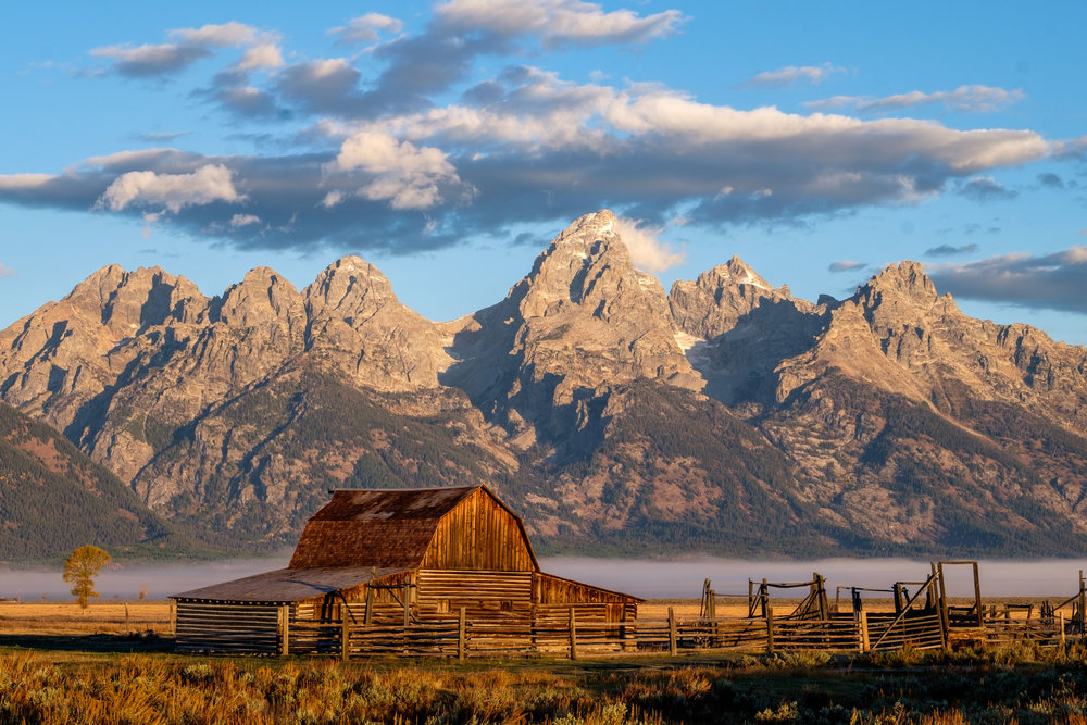 Historic Mormon Row at sunrise with the Grand Tetons in the background.
