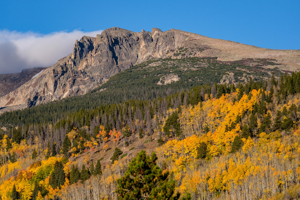 Look no further than Rocky Mountain National Park for some of the most lovely fall foliage in America.