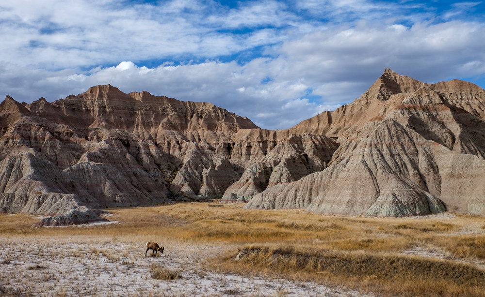 Badlands National Park - 068.jpg