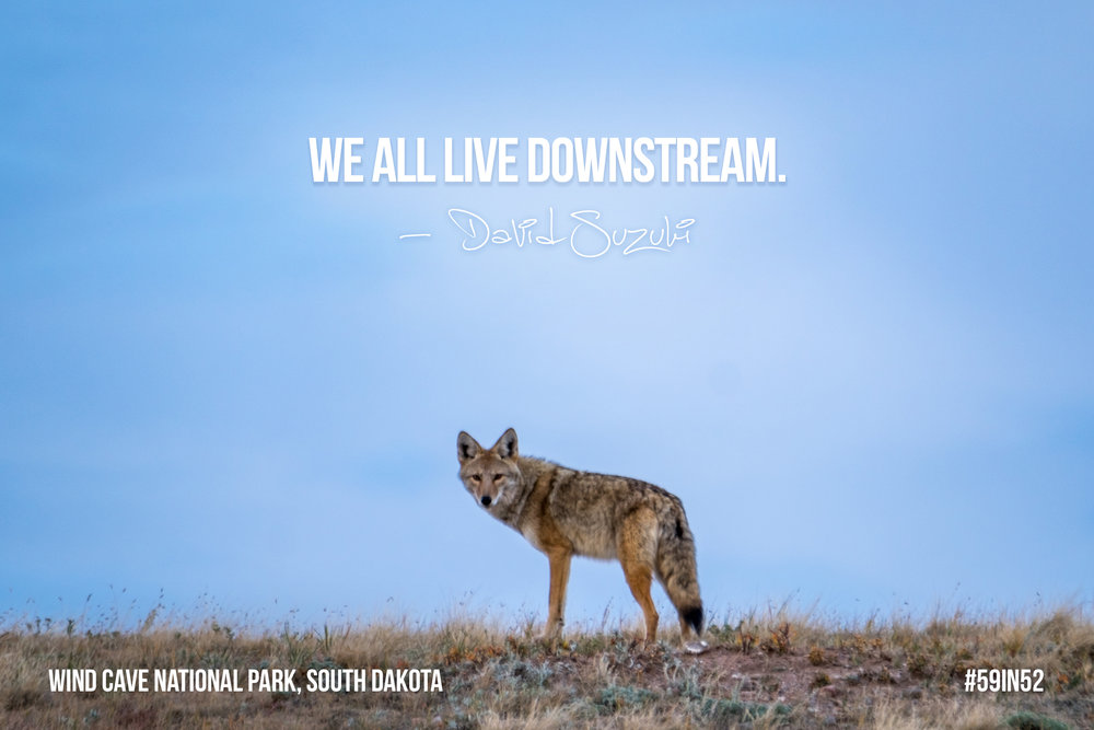 """We all live downstream."" - David Suzuki"