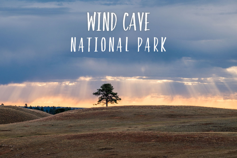 Park 45/59: Wind Cave National Park in South Dakota