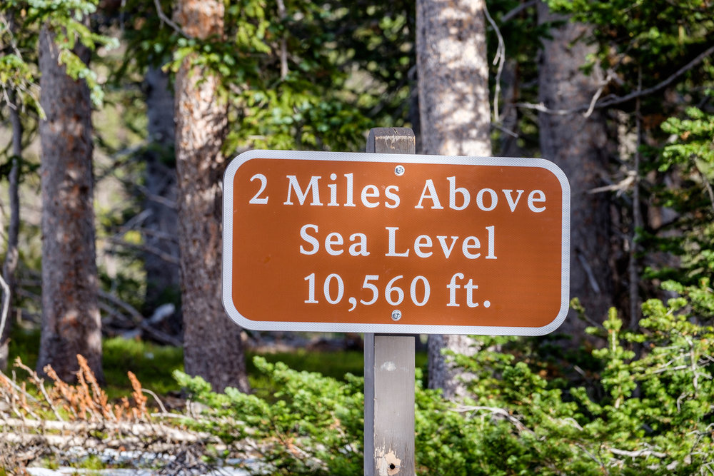 2 miles above sea level in Rocky Mountain National Park in Colorado.