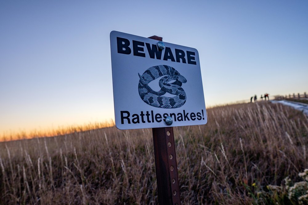 Beware of prairie rattlesnakes in Badlands National Park in South Dakota.